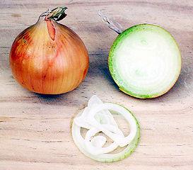 273px-Onion