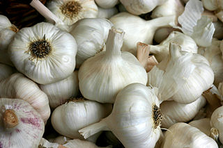 320px-Knoblauch_2995