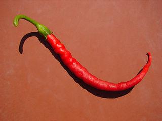 320px-Red_Pepper_03905-nevit